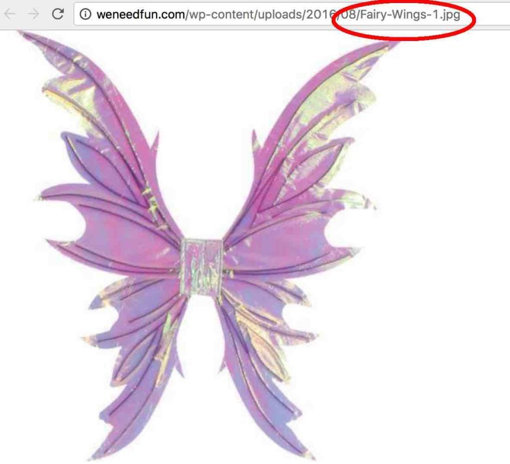 Image showing keyword fairy wings in image title